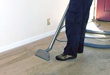 Carpet Mold Removal | Meadows Place