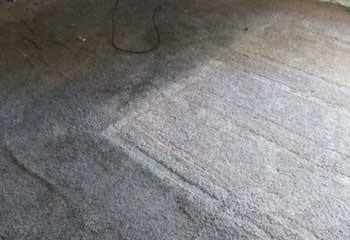 Carpet Stain Removal | Pecan Grove