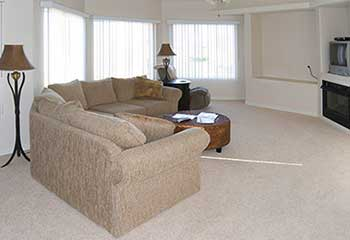 Couch Stain Removal - Richmond