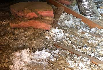 Crawl Space Cleaning | Duct & Attic Cleaning Experts Near Tomball, TX